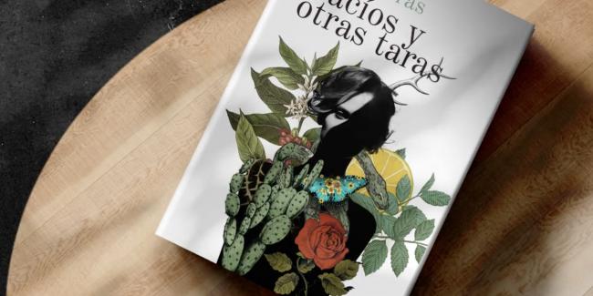 Ana Porras Vacíos y otras taras